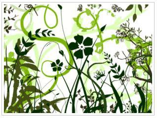 http://3.bp.blogspot.com/_kpPni8nAVwk/R9ino4PVuoI/AAAAAAAAAFs/75W0jS7JdUw/s320/Vector+Foliage-Plants+Photoshop+Brushes.JPG