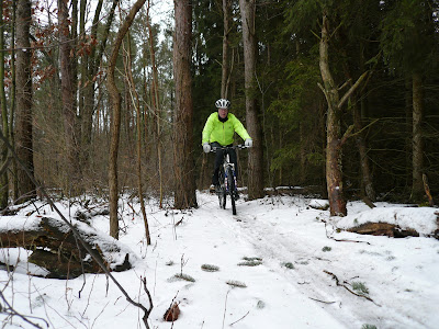 Bass River MTB north loop