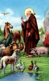 Sanctus Antonius Abbas