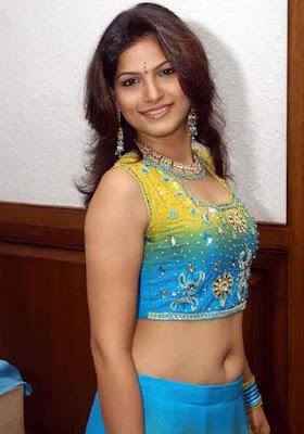hot-sexy-south-indian-desi-tamil-tv-serial-movie-actress-tarika-heroine-taarika