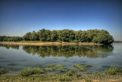 HDR Danube island