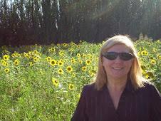 Los Girasoles son la postal del verano en el campo experiemntal
