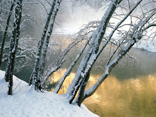 Xtreme Winter Wallpapers