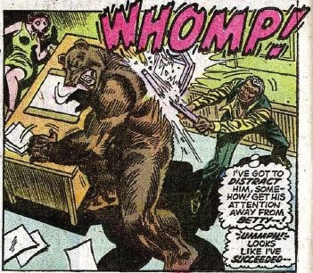 Every good city editor knows how to fight bears
