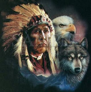 Native American Animal Interactive