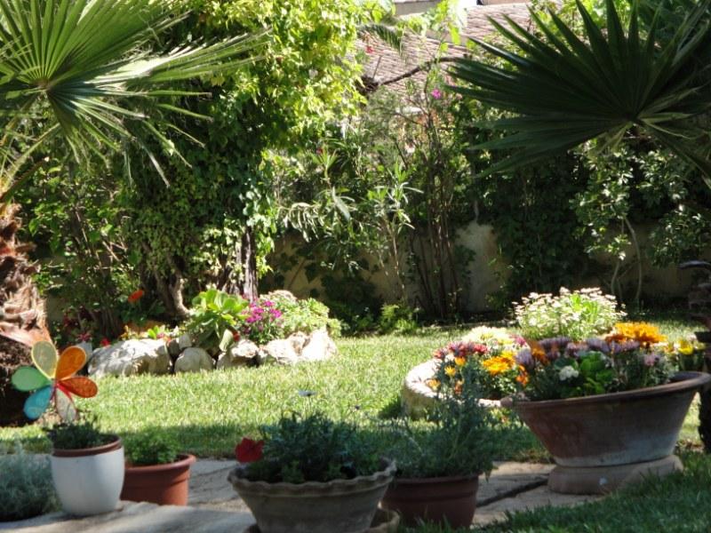 La mimosa de mi jardin rincones de mi jardin for Rincones de jardines pequenos