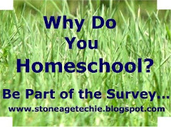Survey at StoneAgeTechie.blogspot.com