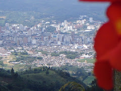 CENTRO DE PEREIRA,COLOMBIA