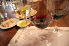 Formal Wine Tasting at Nipozzano