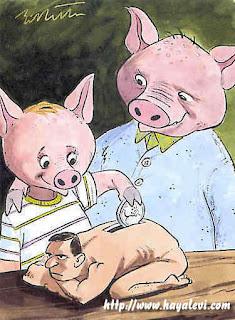 porco, homem