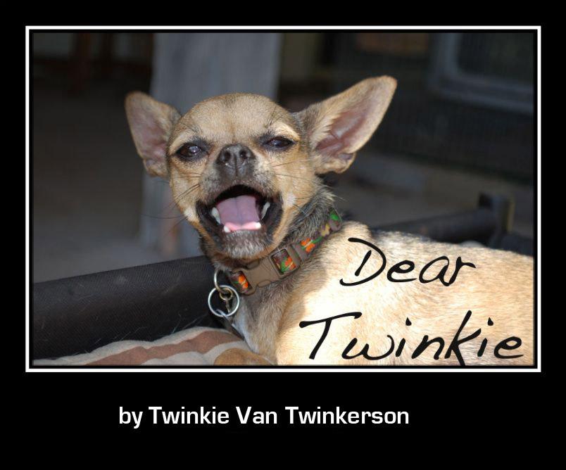 Dear Twinkie Marie Conchita Espenoza Cucaracha Doodle-bug Chupa Cabra ...