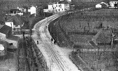 Veduta d'epoca di Prozzolo di Camponogara dal campanile. Si possono notare diversi casoni, nessuno dei quali oggi esistente. Foto tratta dal libro di Luciano Rocco, Vie di terra, d'acqua, di ferro e d'aria.
