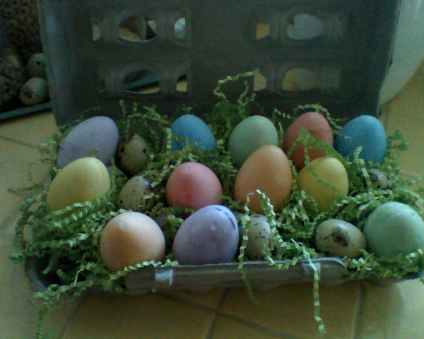 A touch of Easter in the kitchen
