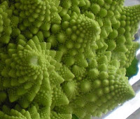 romanesca verdura fractal