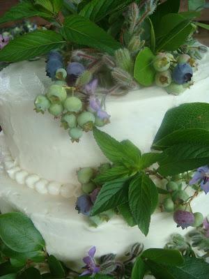 Local Cake Designer Coral Springs