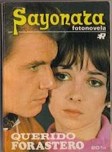 """Éstos dos fueron famosos en el mundo """"fotonovenil""""..."""