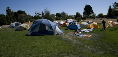 lawn covered in tents