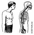 A forward head posture is not attractive, and can create a lot of stress on the cervical and thoracic spine
