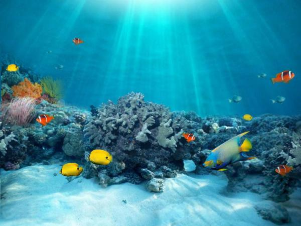 Ποιήματα για τη θάλασσα