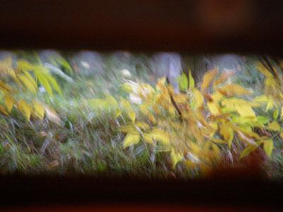 [ventana.jpg]