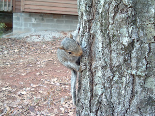 Bugs the Easter Squirrel