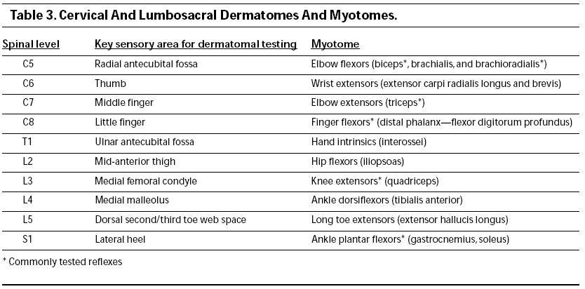 emergency evaluation of neurological weaknessUpper Extremity Myotomes