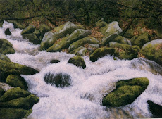chambers creek