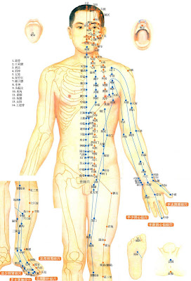 a look at the chinese tradition of acupuncture The roots of the ginseng plant are fairly long and often look like a  years of intellectual tradition,  institute of traditional chinese.
