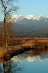 Golden Ears , Alouette River 03/08