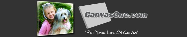 CanvasOne Blog