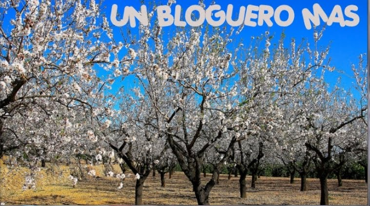 Un Bloguero +