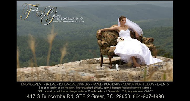 Greenville, Greer SC Portrait and Wedding Photographer  - Touch of Grace Photography