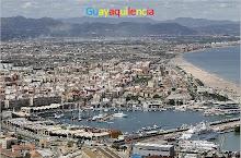 Guayaquilencia