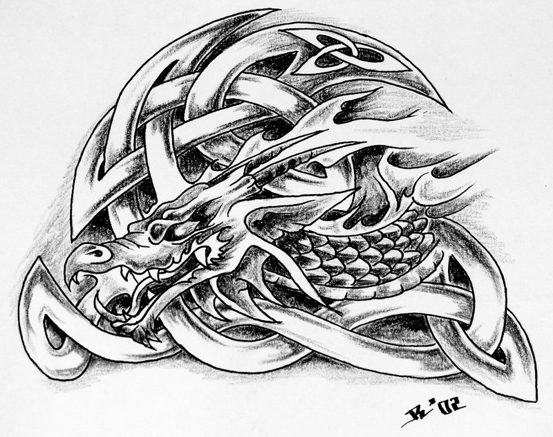 dragon tattoos for men. CELTIC DRAGON TATTOOS FOR MEN