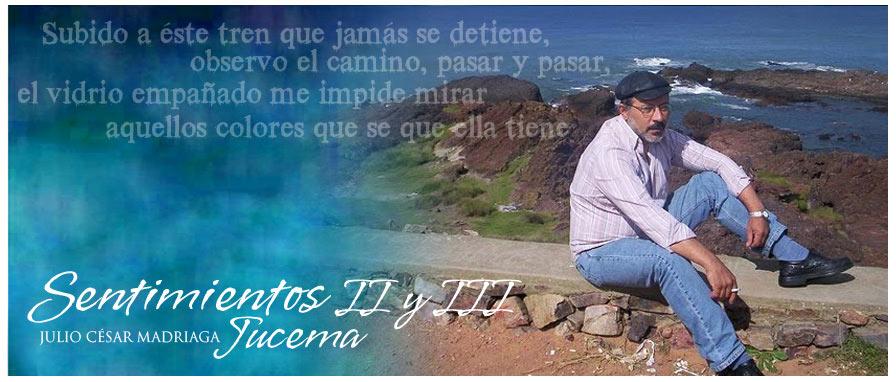 Ju-ce-ma - Julio Madriaga  (POEMAS y otras hiervas)