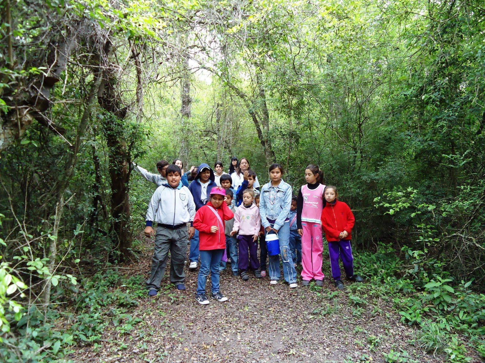 Parque Nacional Chaco - Escuela Nº 639 ¡BIENVENIDOS A NUESTRO BLOG!