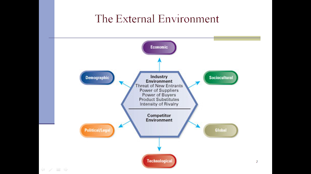 critical analysis of the internal and external environment of an organisation