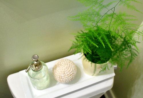 Cura Para Baño Feng Shui:Ideas – Excelentes plantas para interiores – Casa Haus Decoración
