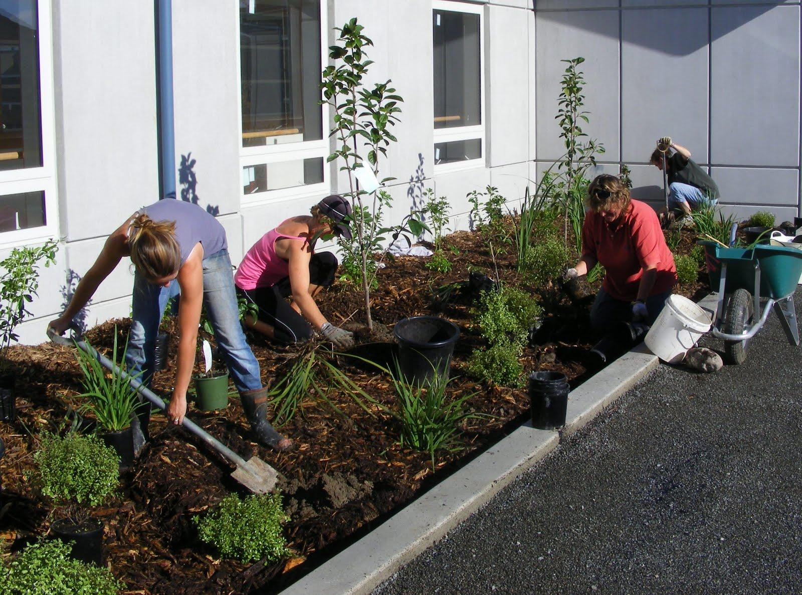 Rachel callaghan landscape architect nz the team at work for Landscape jobs nz
