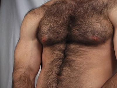Hommes musculaires durs et poilus