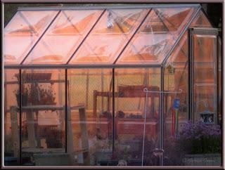 sunrise on greenhouse