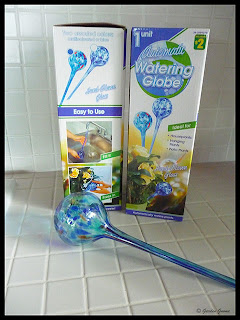 automatic watering globe