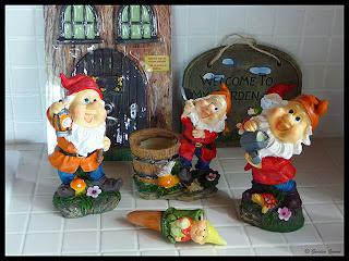 new gnomes