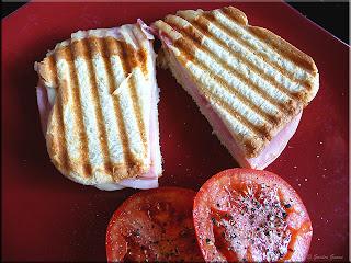 classic panini sandwich