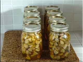 home canned mushrooms