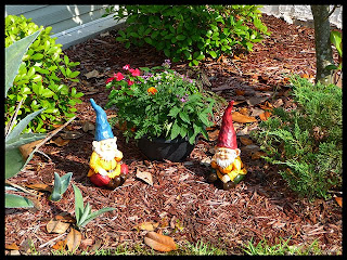 vacation gnomes