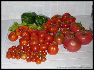 harvest Sep 7, 2010
