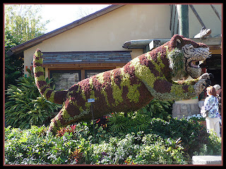 tiger topiary at Busch Gardens, Tampa, Florida