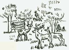 Zeichnung von meinem Vater