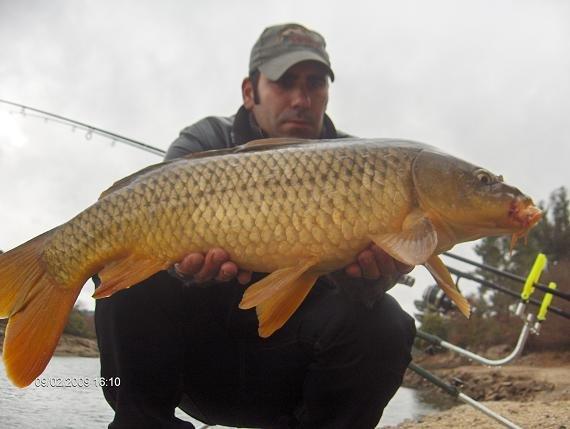 Carpa 5,6 kg 9 Fevereiro 2009